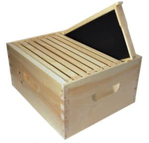 Hive Frame - Campbell's Gold